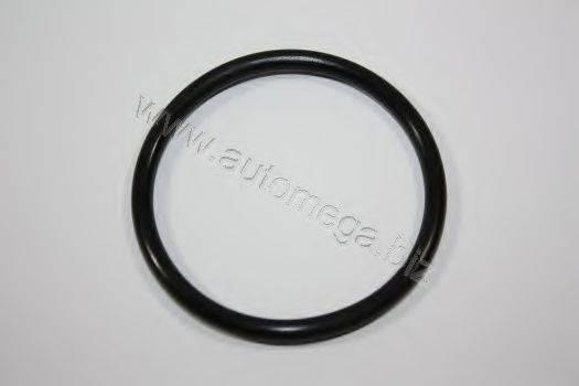 AUTOMEGA 301210119038B Прокладка, термостат