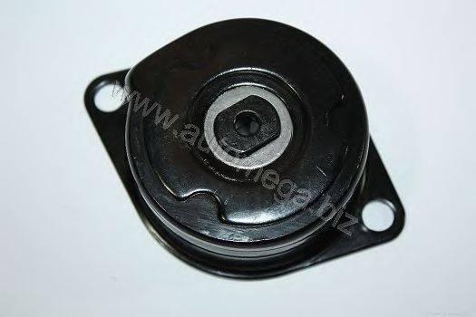 AUTOMEGA 309030315028R Ролик натяжной ремня генератора
