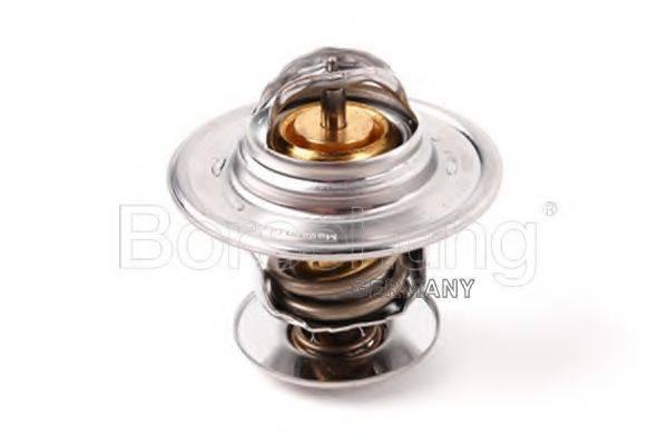 BORSEHUNG B13141 Термостат